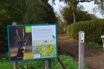 Sfeer - Zichem ~ De Demerbroeken (Vlaams-Brabant) 20-10-2018 ©Steve Wullaert