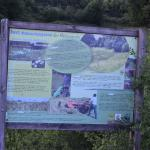 Sfeer - Rocherath ~ Naturschutsgebiet der Holzwarche (Luik) 23-06-2017 ©Steve Wullaert