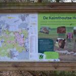 Sfeer - Kalmthout ~ De Kalmthoutse Heide - Stappersven (Antwerpen) 24-03-2018 ©Steve Wullaert