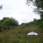 Sfeer ~ Opglabbeek ~ Mijnterril - Zwarte Berg (Limburg) 17-08-2019 ©Steve Wullaert