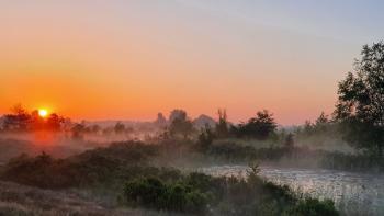 Sfeer - Neerpelt ~ Het Hageven (Limburg) 17-07-2021 ©Steve Wullaert