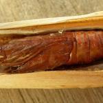 Nonagria typhae - Lisdoddeboorder