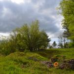 Sfeer - Bomal ~ Mont des Pins (Luxemburg) 08-05-2021 ©Steve Wullaert