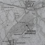 Sfeer - Chantemelle ~ Marais de Chantemelle (Luxemburg) 29-05-2021 ©Steve Wullaert