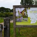 Sfeer - Dilsen-Stokkem ~ Negenoord-Kerkeweerd (Limburg) 25-07-2020 ©Steve Wullaert