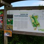Sfeer - Knokke-Heist ~ Baai van Heist & Sashul (West-Vlaanderen)  20-06-2021 ©Steve Wullaert