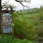 Sfeer - Rocherath ~ Vallée de la Holzwarche (Luik) 06-06-2021 ©Steve Wullaert